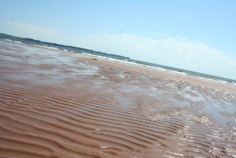 Low tide.